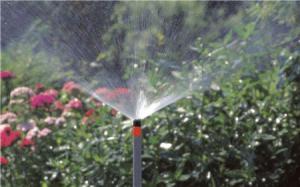 Удобный полив высоких растений